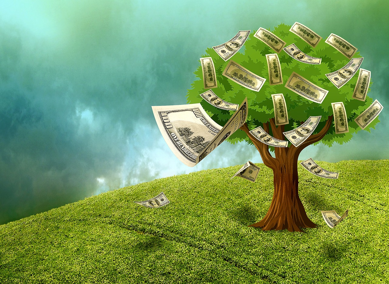 Good Internet Money tree